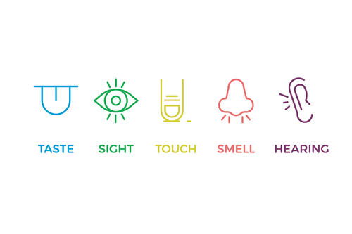 The five senses of engagement