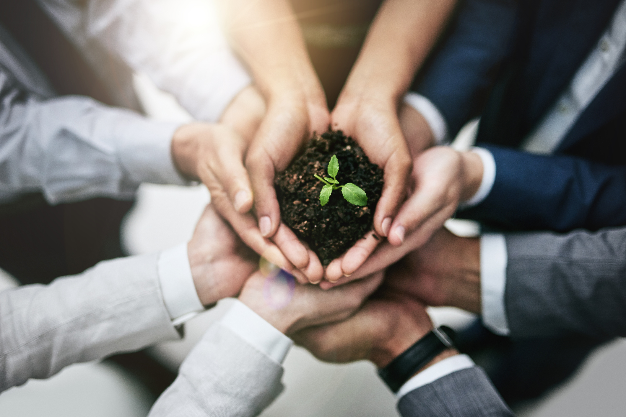 Event professionals holding there hands in a circle with dirt in the middle to showcase sustainability in the event industry